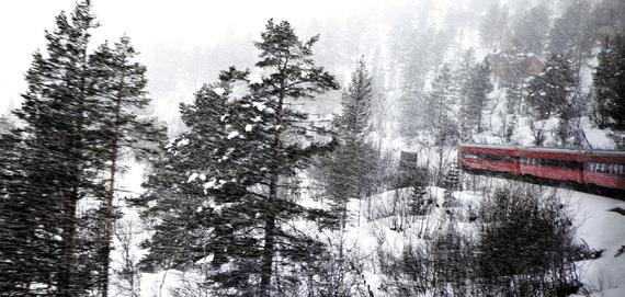 피오르 산악 관광열차.