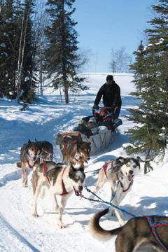 옐로나이프에서는 스릴 만점의 스노모빌 운전하기, 개썰매를 타고 호수를 달리는 체험, 얼음낚시 체험 등 극지방에서만 경험할 수 있는 독특한 프로그램도 즐길 수 있다.