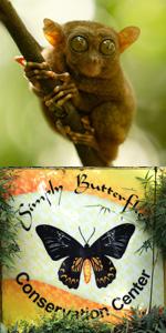 타르시어, 나비농장