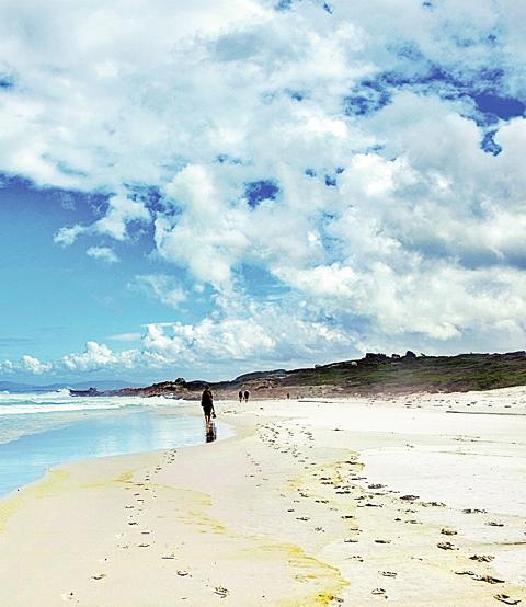 태즈메이니아 해변에 있는 트레킹 코스는 맨발로 모래 위를 걷는 맛이 일품이다.