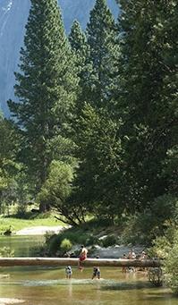 레드우드 국립 및 주립공원