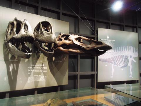 후쿠이 공룡박물관
