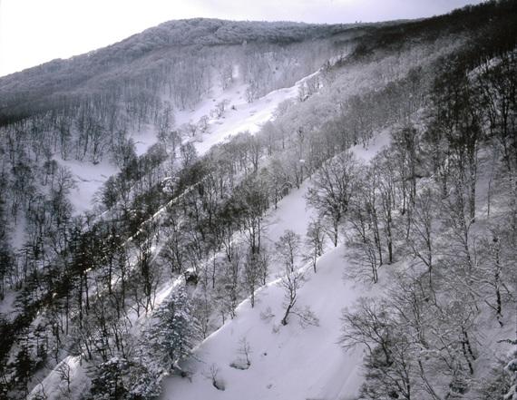 핫코다산의 겨울