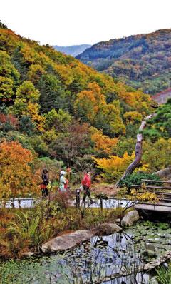 가을의 곤지암