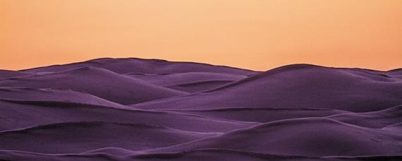 태양과 사막의 모래가 만들어낸 독특한 물결.