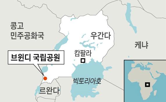 [그래픽] 브윈디 국립공원