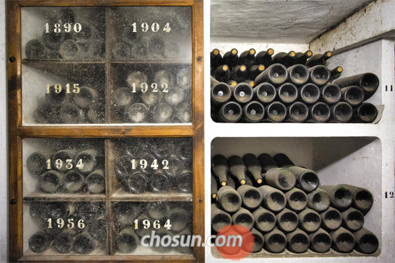 보데가스 리오하나스 지하 숙성에 저장된 오래된 와인들.