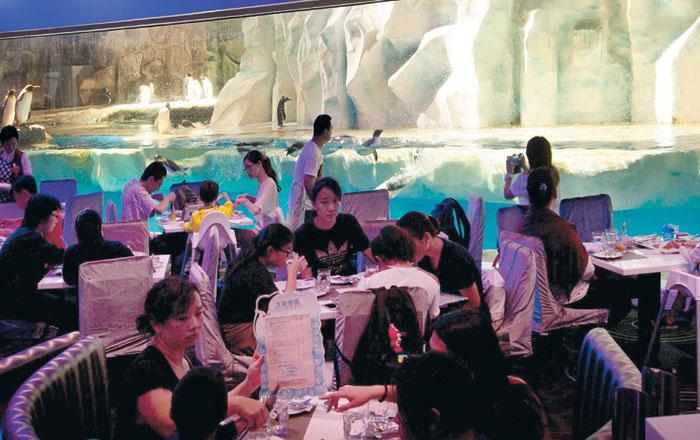 홍콩 오션파크 안에 있는 '턱시도 레스토랑'. 펭귄들을